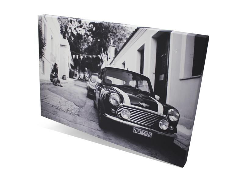 QuickPro Auto Canvas